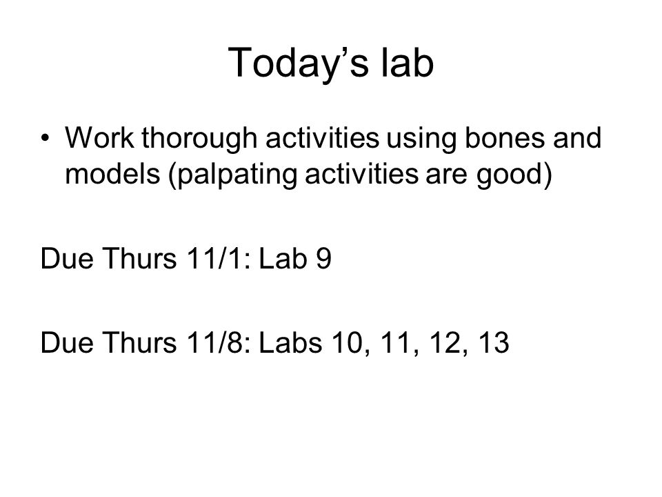 Today's lab Work thorough activities using bones and models (palpating activities are good) Due Thurs 11/1: Lab 9 Due Thurs 11/8: Labs 10, 11, 12, 13
