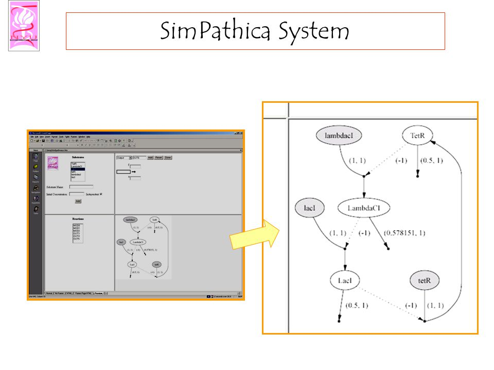 SimPathica System