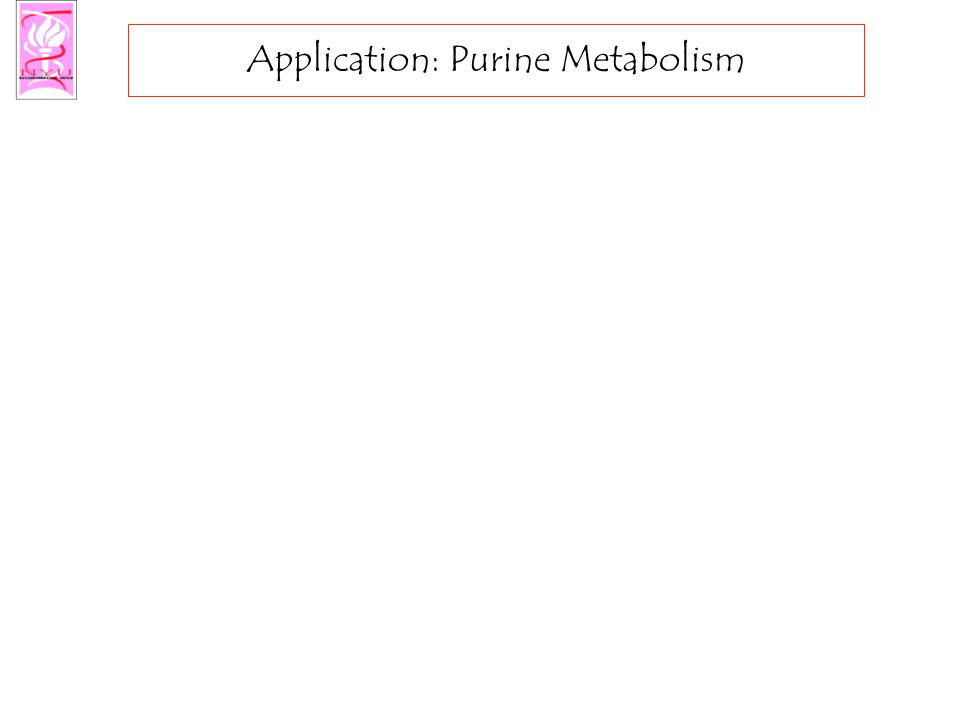 Application: Purine Metabolism