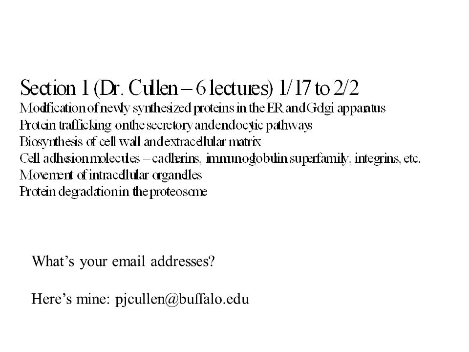 What's your email addresses? Here's mine: pjcullen@buffalo.edu