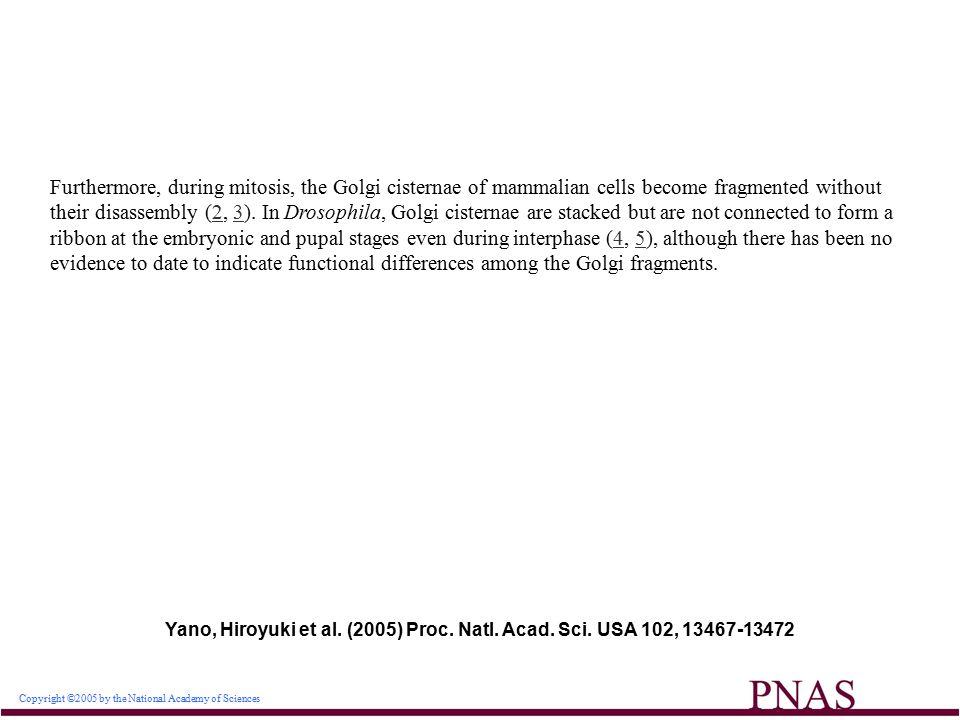 Yano, Hiroyuki et al. (2005) Proc. Natl. Acad. Sci.