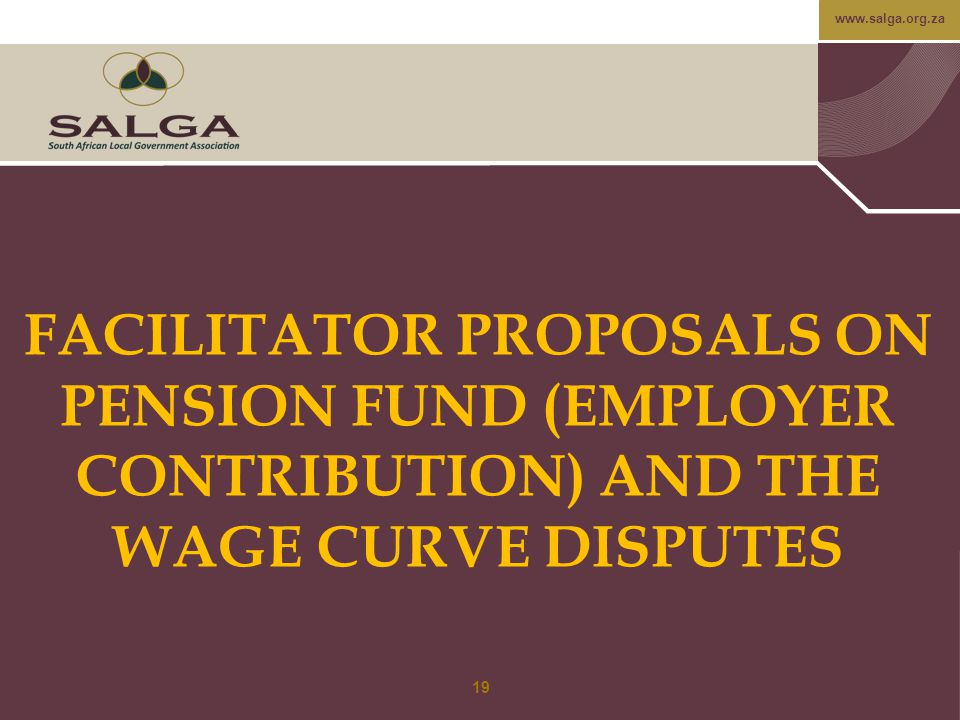 www.salga.org.za FACILITATOR PROPOSALS ON PENSION FUND (EMPLOYER CONTRIBUTION) AND THE WAGE CURVE DISPUTES 19