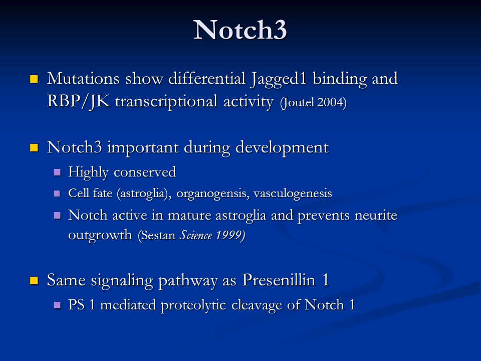 Notch3 Mutations show differential Jagged1 binding and RBP/JK transcriptional activity (Joutel 2004) Mutations show differential Jagged1 binding and RBP/JK transcriptional activity (Joutel 2004) Notch3 important during development Notch3 important during development Highly conserved Highly conserved Cell fate (astroglia), organogensis, vasculogenesis Cell fate (astroglia), organogensis, vasculogenesis Notch active in mature astroglia and prevents neurite outgrowth (Sestan Science 1999) Notch active in mature astroglia and prevents neurite outgrowth (Sestan Science 1999) Same signaling pathway as Presenillin 1 Same signaling pathway as Presenillin 1 PS 1 mediated proteolytic cleavage of Notch 1 PS 1 mediated proteolytic cleavage of Notch 1