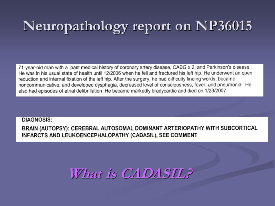 Neuropathology report on NP36015 What is CADASIL?