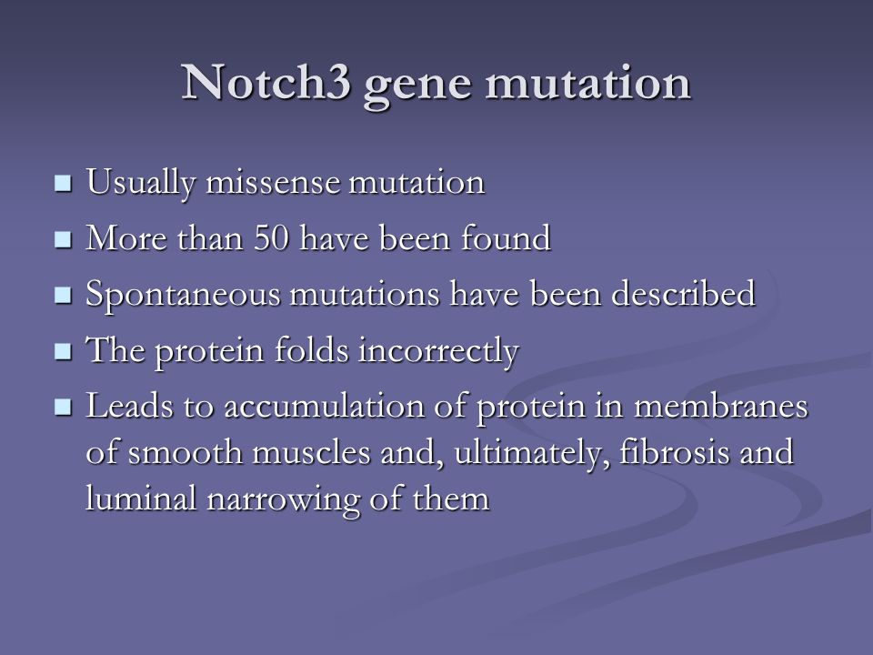 Notch3 gene mutation Usually missense mutation Usually missense mutation More than 50 have been found More than 50 have been found Spontaneous mutatio
