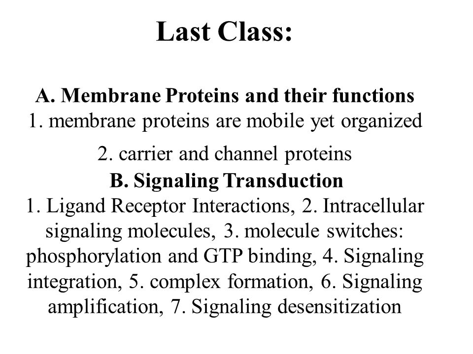 Last Class: A. Membrane Proteins and their functions 1.