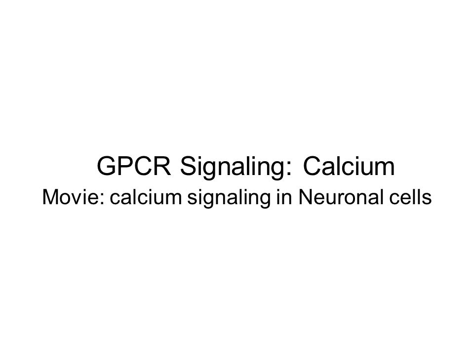 GPCR Signaling: Calcium Movie: calcium signaling in Neuronal cells