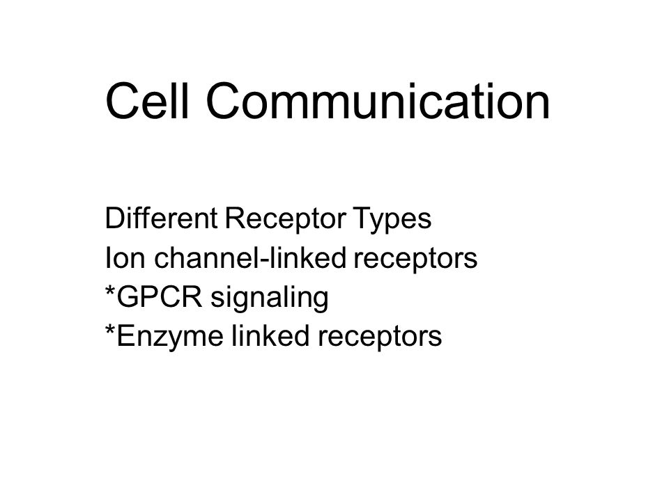 G Protein Coupled Receptors (GPCR)