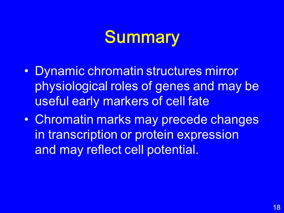 Summary Dynamic chromatin structures mirror physiological roles of genes and may be useful early markers of cell fate Chromatin marks may precede chan