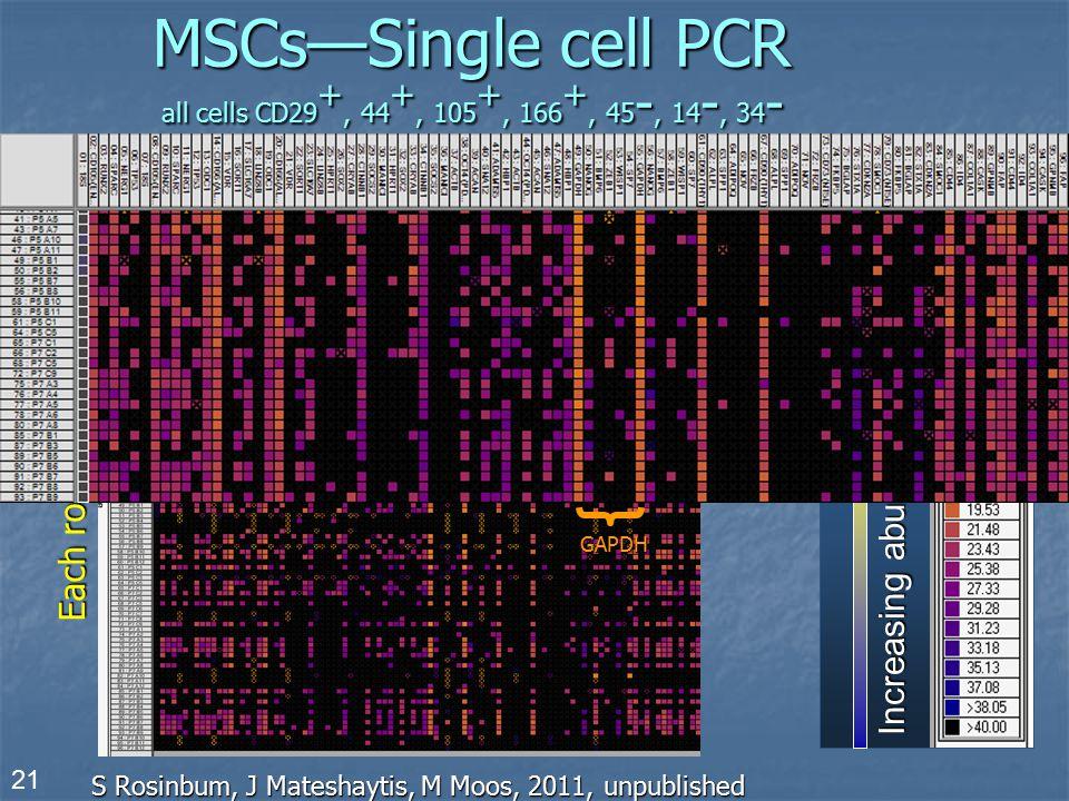 MSCs—Single cell PCR all cells CD29 +, 44 +, 105 +, 166 +, 45 -, 14 -, 34 - S Rosinbum, J Mateshaytis, M Moos, 2011, unpublished Increasing abundance