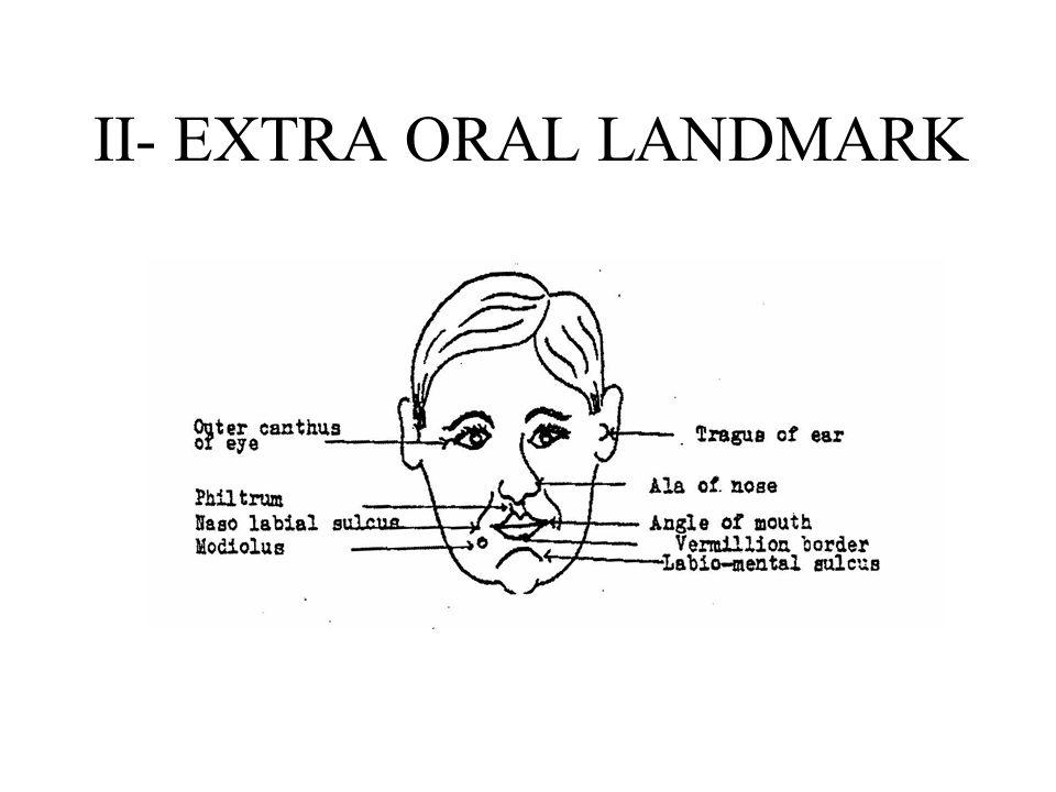 II- EXTRA ORAL LANDMARK
