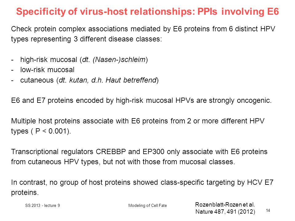 Specificity of virus-host relationships: PPIs involving E6 SS 2013 - lecture 9 14 Modeling of Cell Fate Rozenblatt-Rozen et al.