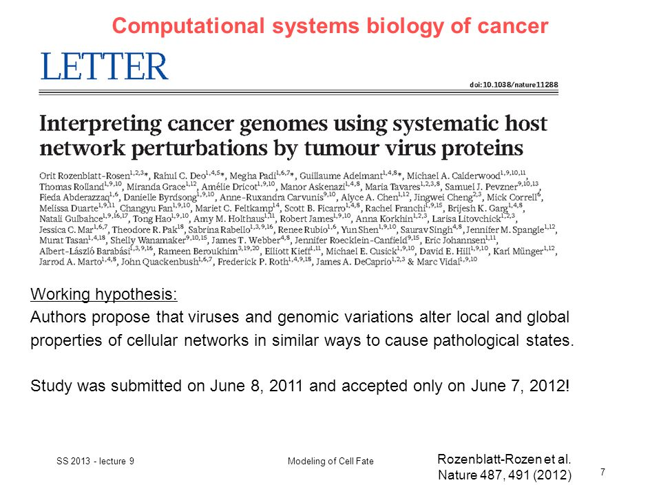 Computational systems biology of cancer SS 2013 - lecture 9 7 Modeling of Cell Fate Rozenblatt-Rozen et al.