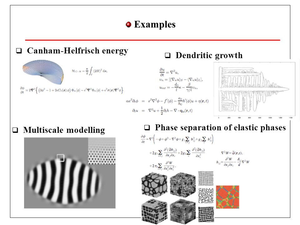 Examples  Canham-Helfrisch energy  Multiscale modelling  Phase separation of elastic phases  Dendritic growth