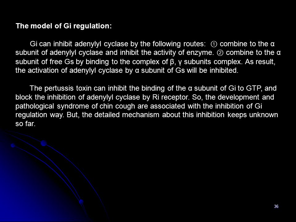 36 The model of Gi regulation: Gi can inhibit adenylyl cyclase by the following routes: ① combine to the α subunit of adenylyl cyclase and inhibit the activity of enzyme.
