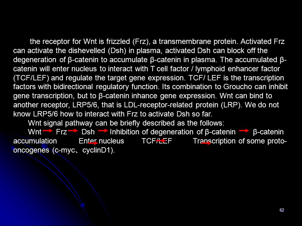 62 the receptor for Wnt is frizzled (Frz), a transmembrane protein.