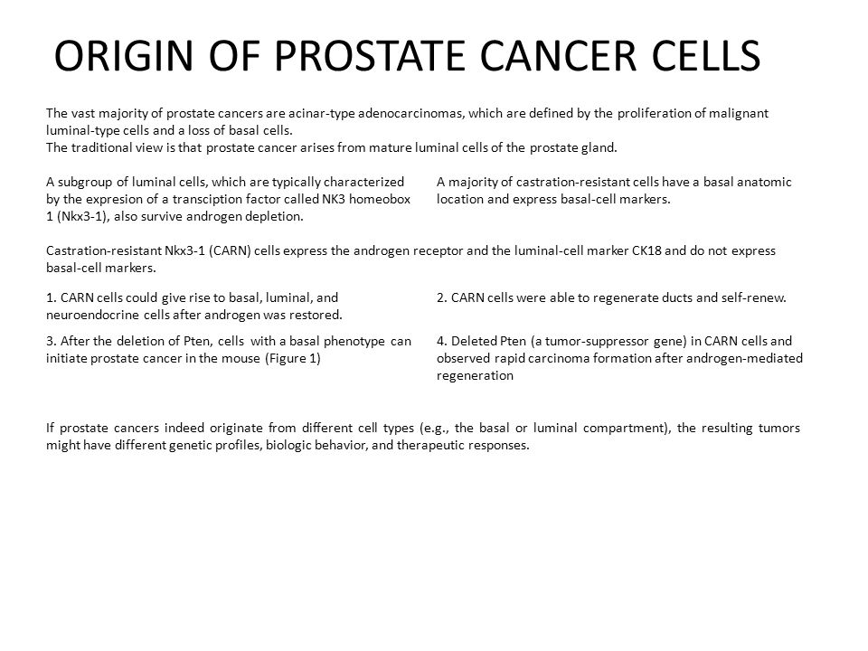 ORIGIN OF PROSTATE CANCER CELLS The vast majority of prostate cancers are acinar-type adenocarcinomas, which are defined by the proliferation of malignant luminal-type cells and a loss of basal cells.