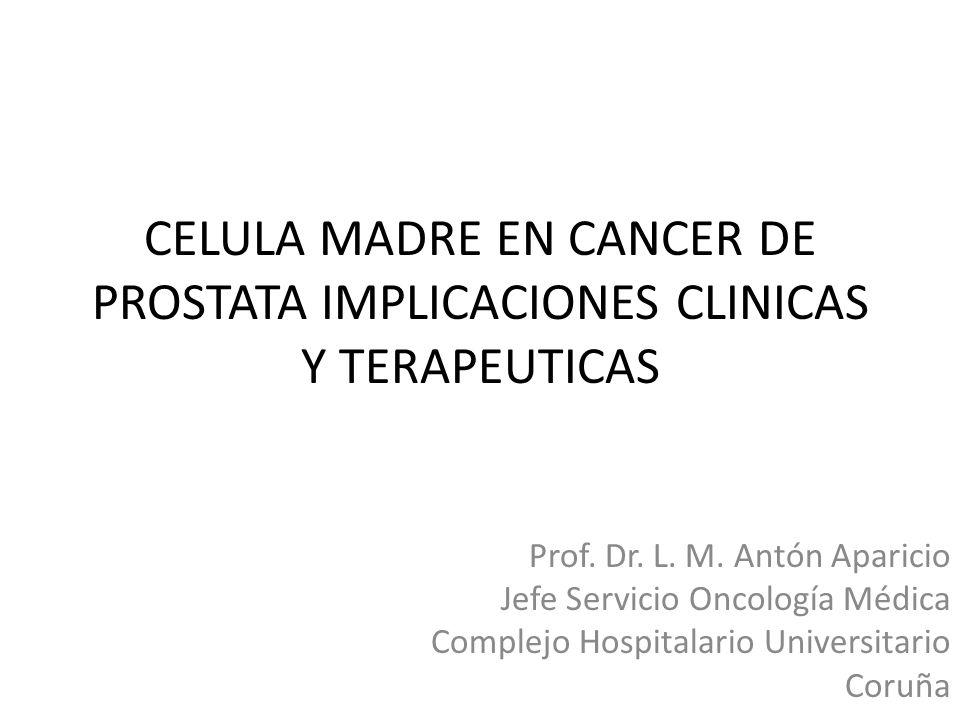 CELULA MADRE EN CANCER DE PROSTATA IMPLICACIONES CLINICAS Y TERAPEUTICAS Prof. Dr. L. M. Antón Aparicio Jefe Servicio Oncología Médica Complejo Hospit