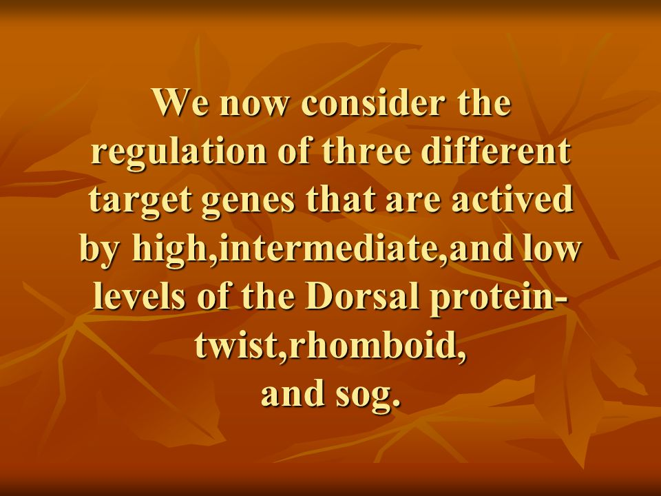 We now consider the regulation of three different target genes that are actived by high,intermediate,and low levels of the Dorsal protein- twist,rhomboid, and sog.