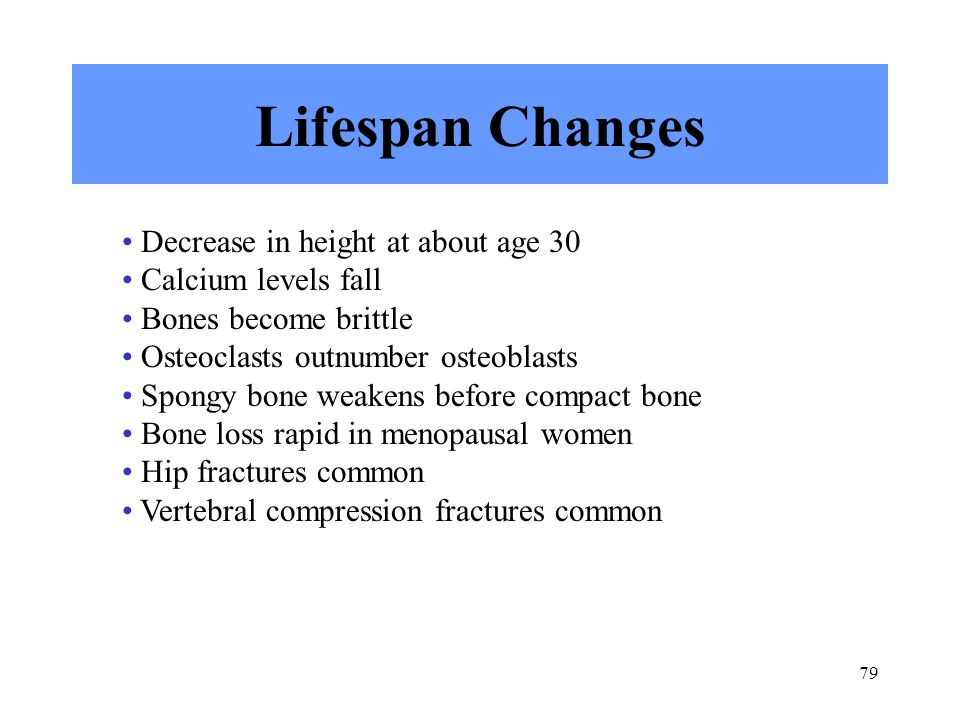 79 Lifespan Changes Decrease in height at about age 30 Calcium levels fall Bones become brittle Osteoclasts outnumber osteoblasts Spongy bone weakens