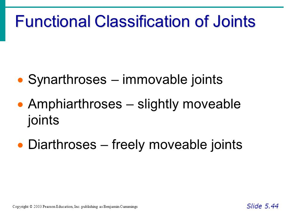 Functional Classification of Joints Slide 5.44 Copyright © 2003 Pearson Education, Inc. publishing as Benjamin Cummings  Synarthroses – immovable joi