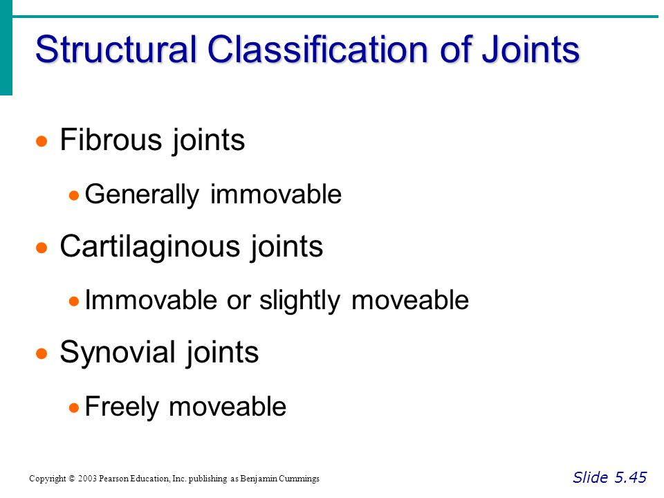 Structural Classification of Joints Slide 5.45 Copyright © 2003 Pearson Education, Inc. publishing as Benjamin Cummings  Fibrous joints  Generally i