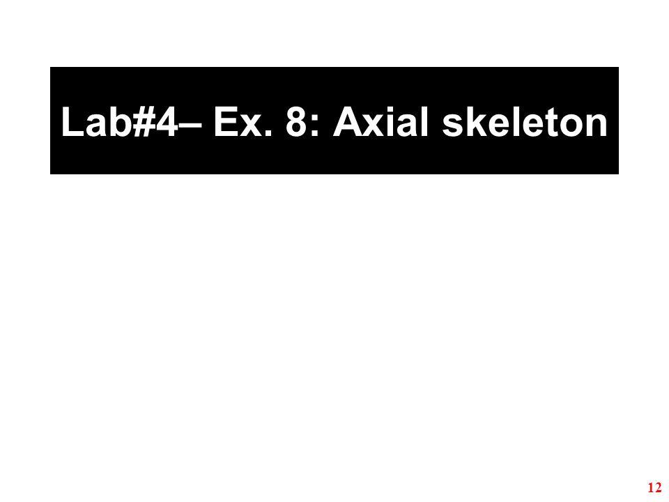 Lab#4– Ex. 8: Axial skeleton 12