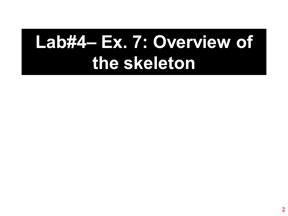 Lab#4– Ex. 7: Overview of the skeleton 2