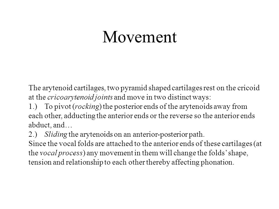 Movement The arytenoid cartilages, two pyramid shaped cartilages rest on the cricoid at the cricoarytenoid joints and move in two distinct ways: 1.) T