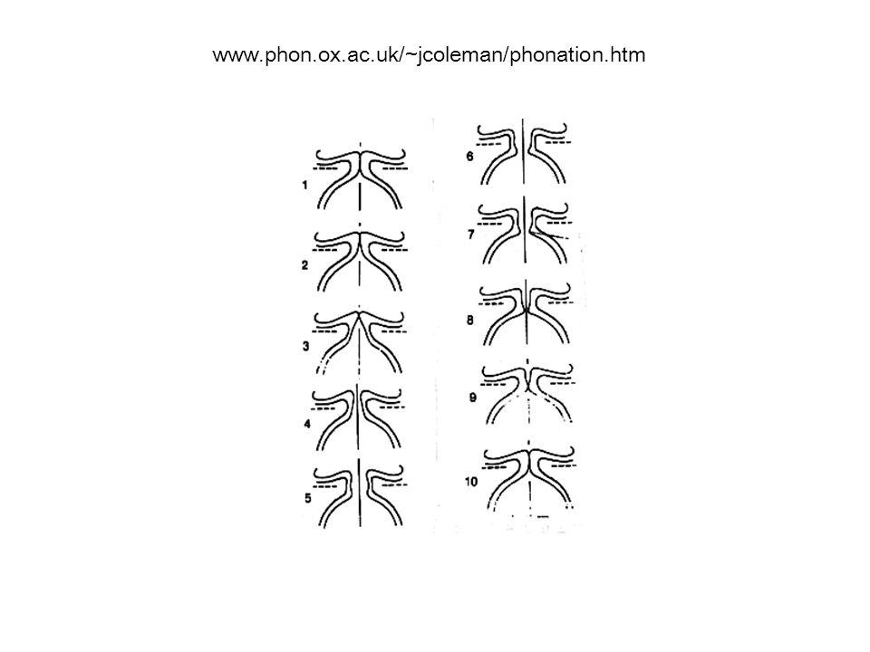 www.phon.ox.ac.uk/~jcoleman/phonation.htm