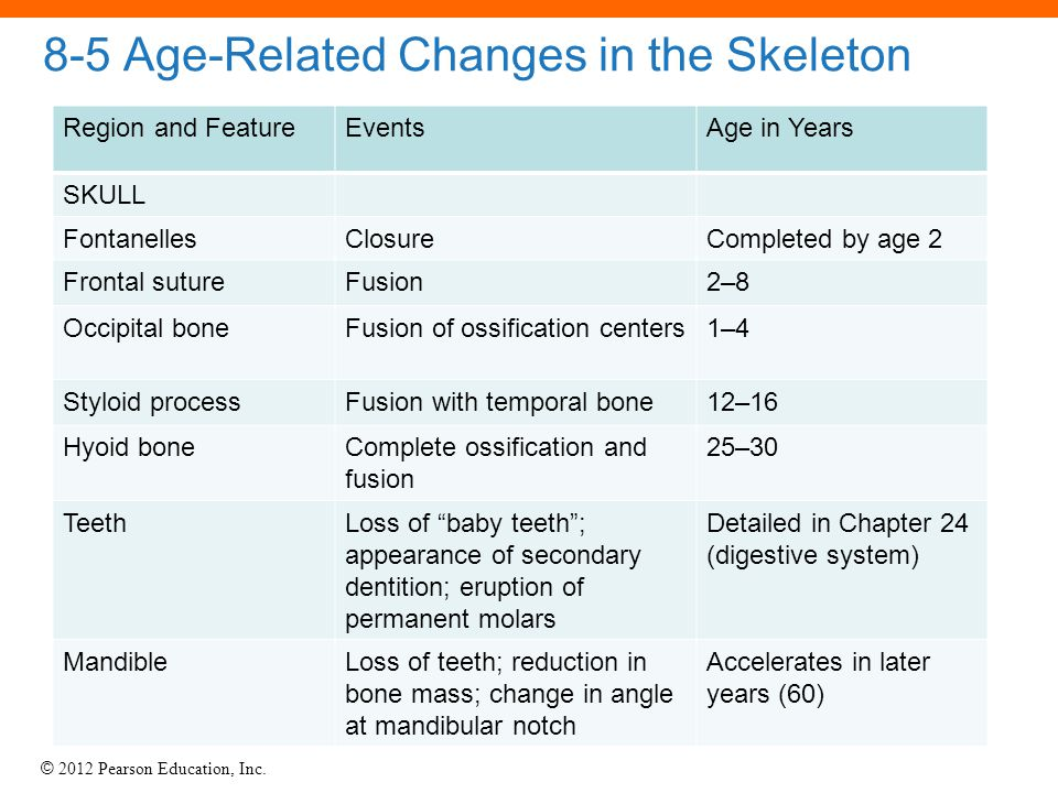 © 2012 Pearson Education, Inc. 8-5 Age-Related Changes in the Skeleton Region and FeatureEventsAge in Years SKULL FontanellesClosureCompleted by age 2
