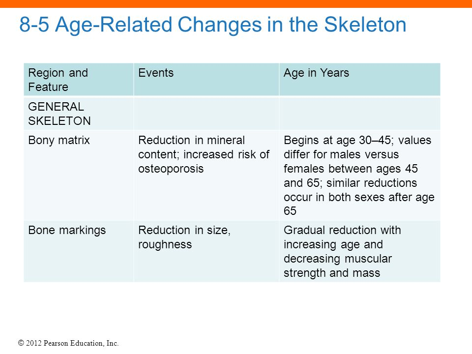 © 2012 Pearson Education, Inc. 8-5 Age-Related Changes in the Skeleton Region and Feature EventsAge in Years GENERAL SKELETON Bony matrixReduction in