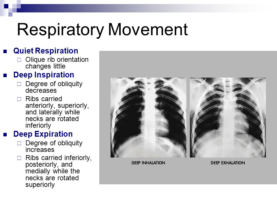 Respiratory Movement Quiet Respiration  Olique rib orientation changes little Deep Inspiration  Degree of obliquity decreases  Ribs carried anteriorly, superiorly, and laterally while necks are rotated inferiorly Deep Expiration  Degree of obliquity increases  Ribs carried inferiorly, posteriorly, and medially while the necks are rotated superiorly