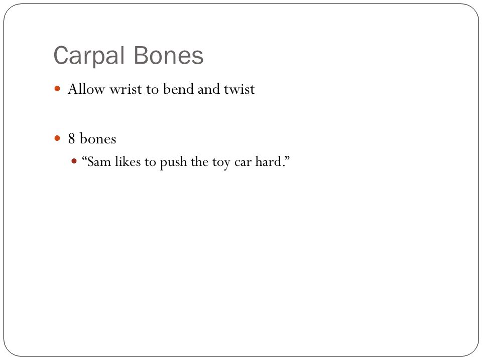 "Carpal Bones Allow wrist to bend and twist 8 bones ""Sam likes to push the toy car hard."""