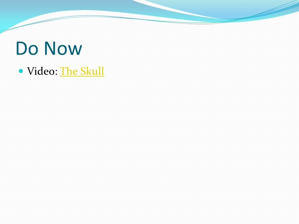 Do Now Video: The SkullThe Skull