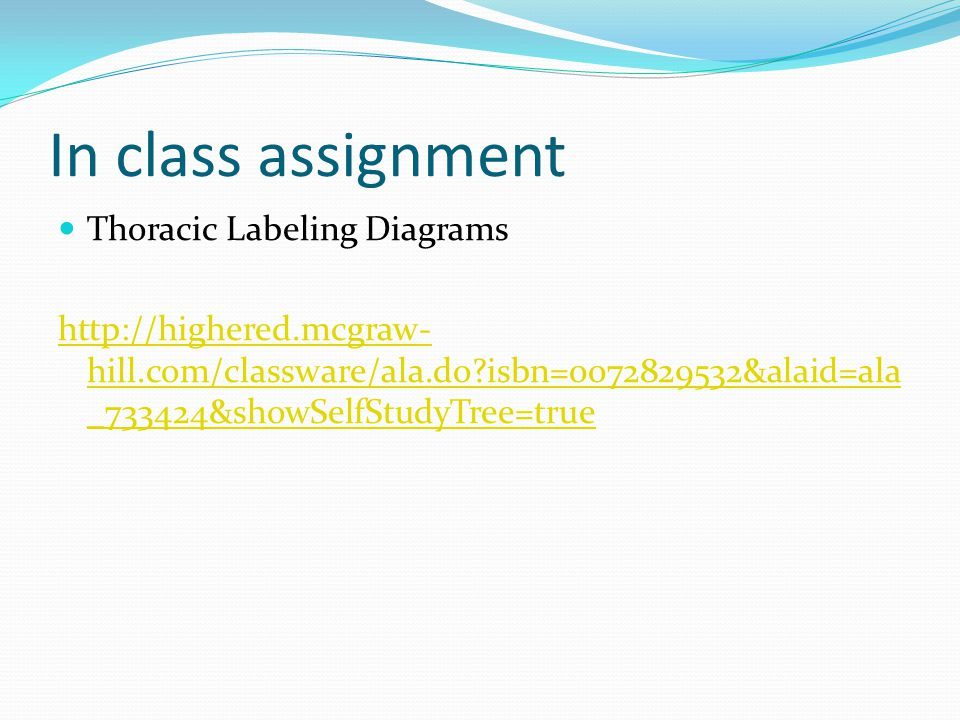 In class assignment Thoracic Labeling Diagrams http://highered.mcgraw- hill.com/classware/ala.do?isbn=0072829532&alaid=ala _733424&showSelfStudyTree=t