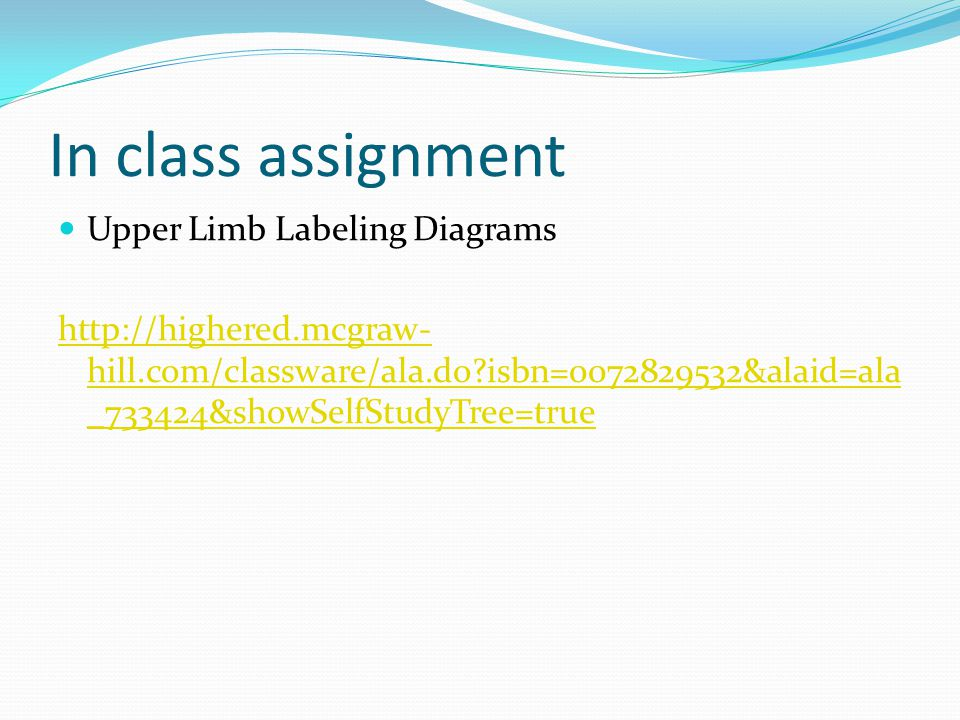 In class assignment Upper Limb Labeling Diagrams http://highered.mcgraw- hill.com/classware/ala.do?isbn=0072829532&alaid=ala _733424&showSelfStudyTree