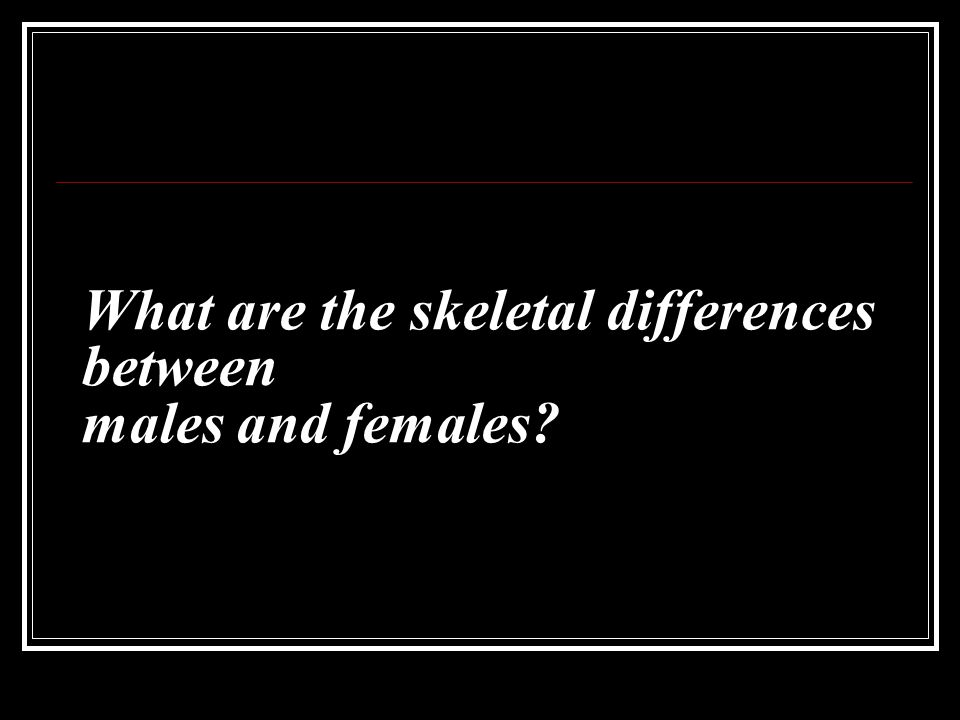 What are the skeletal differences between males and females?