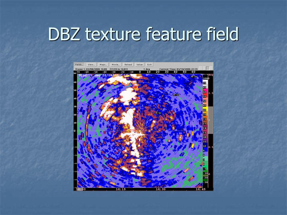 DBZ texture feature field