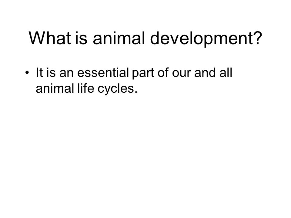 It is an essential part of our and all animal life cycles.