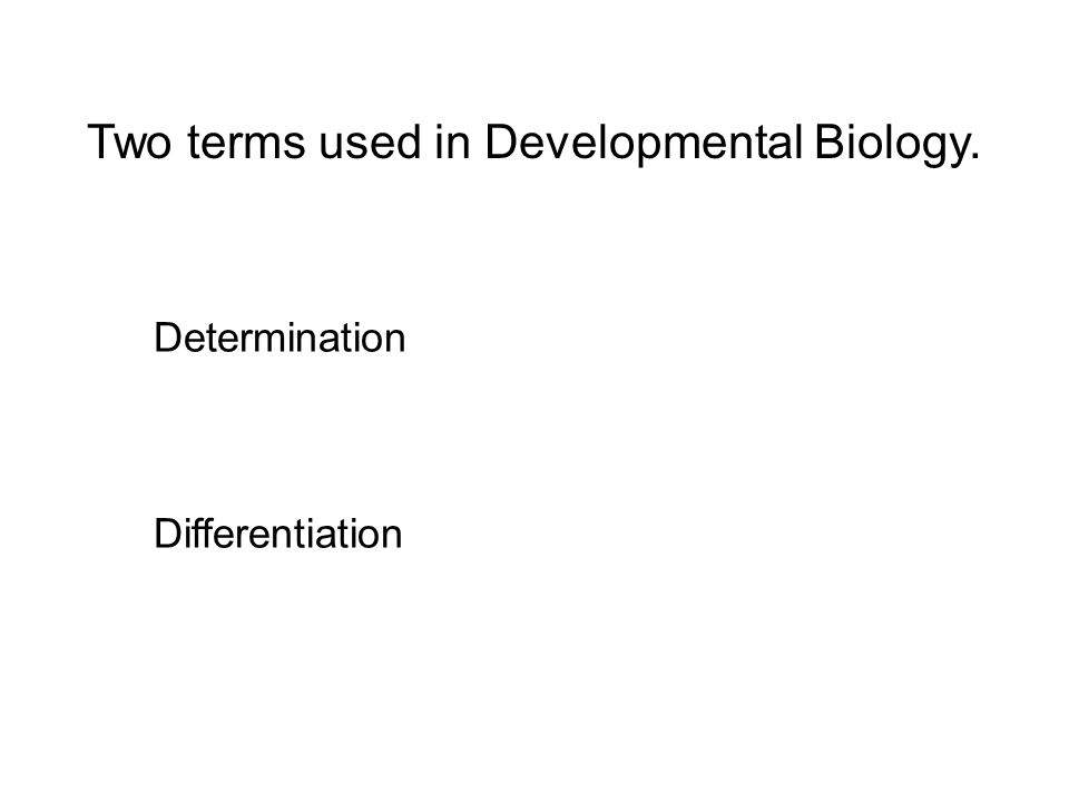 Two terms used in Developmental Biology. Determination Differentiation