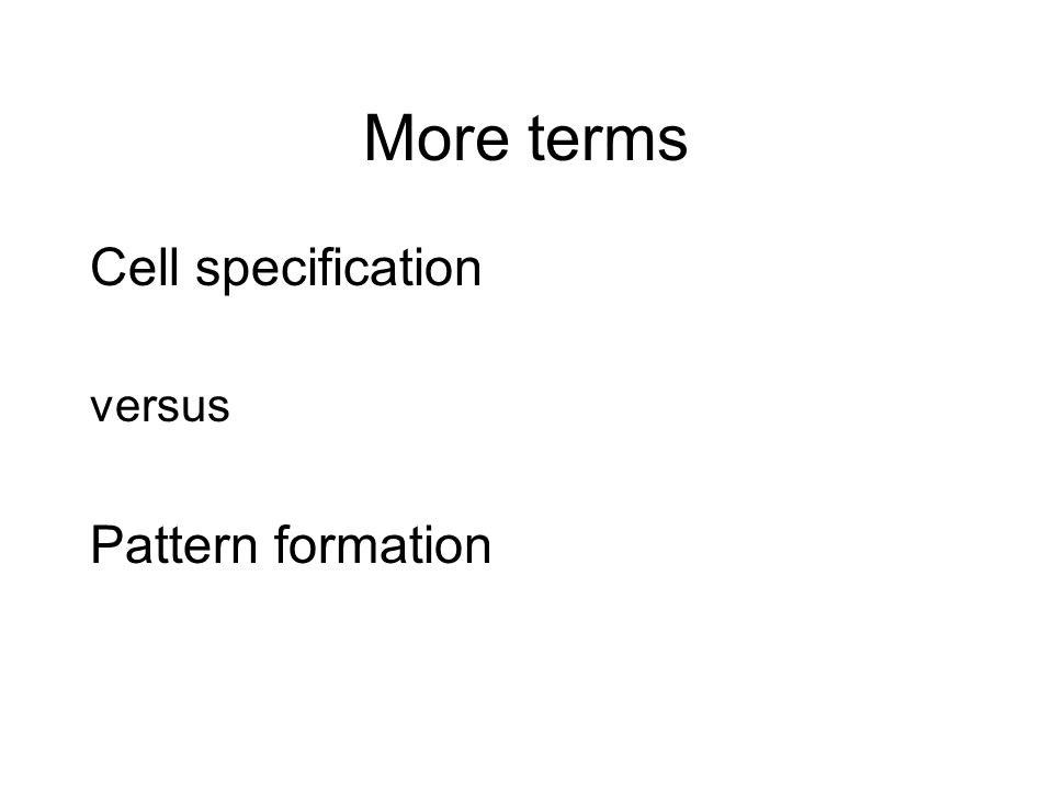 More terms Cell specification versus Pattern formation
