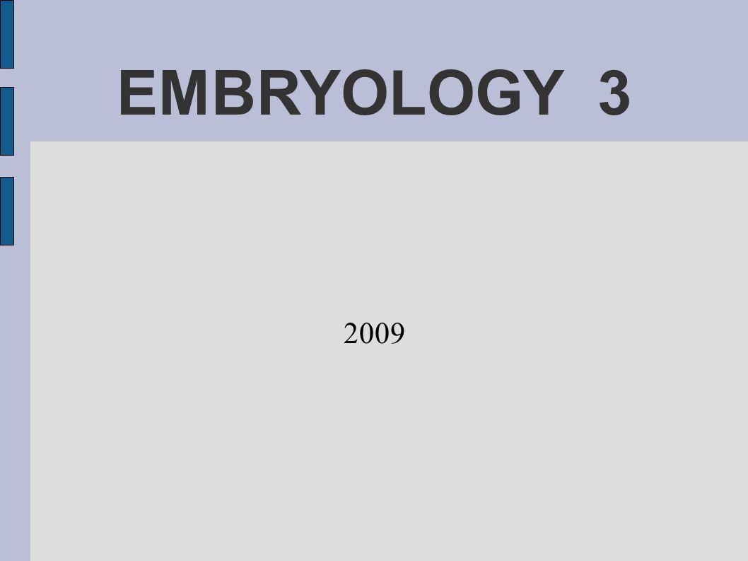 EMBRYOLOGY 3 2009