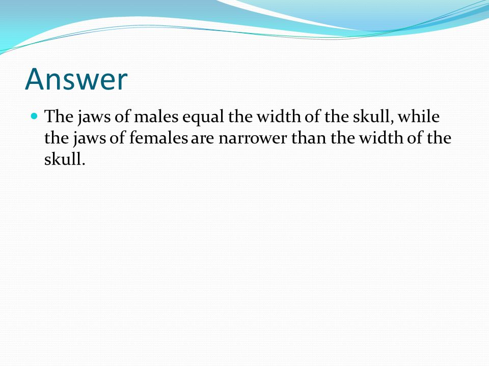 Answer The jaws of males equal the width of the skull, while the jaws of females are narrower than the width of the skull.
