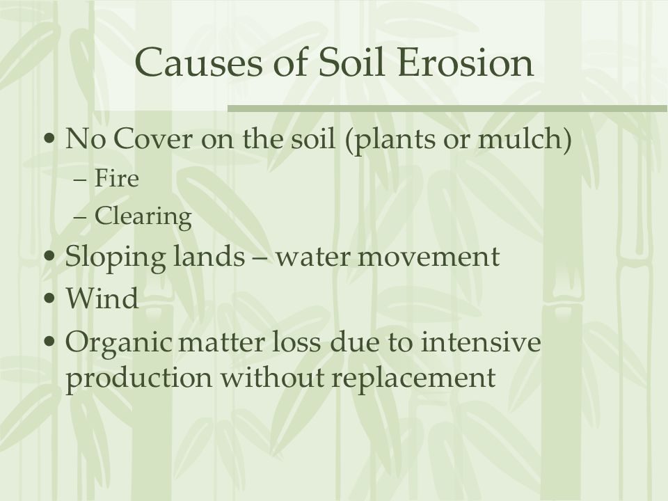Causes of Soil Erosion No Cover on the soil (plants or mulch) –Fire –Clearing Sloping lands – water movement Wind Organic matter loss due to intensive production without replacement
