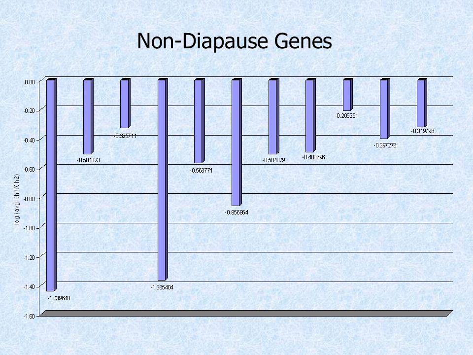 Non-Diapause Genes