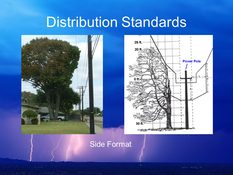 Distribution Standards Side Format