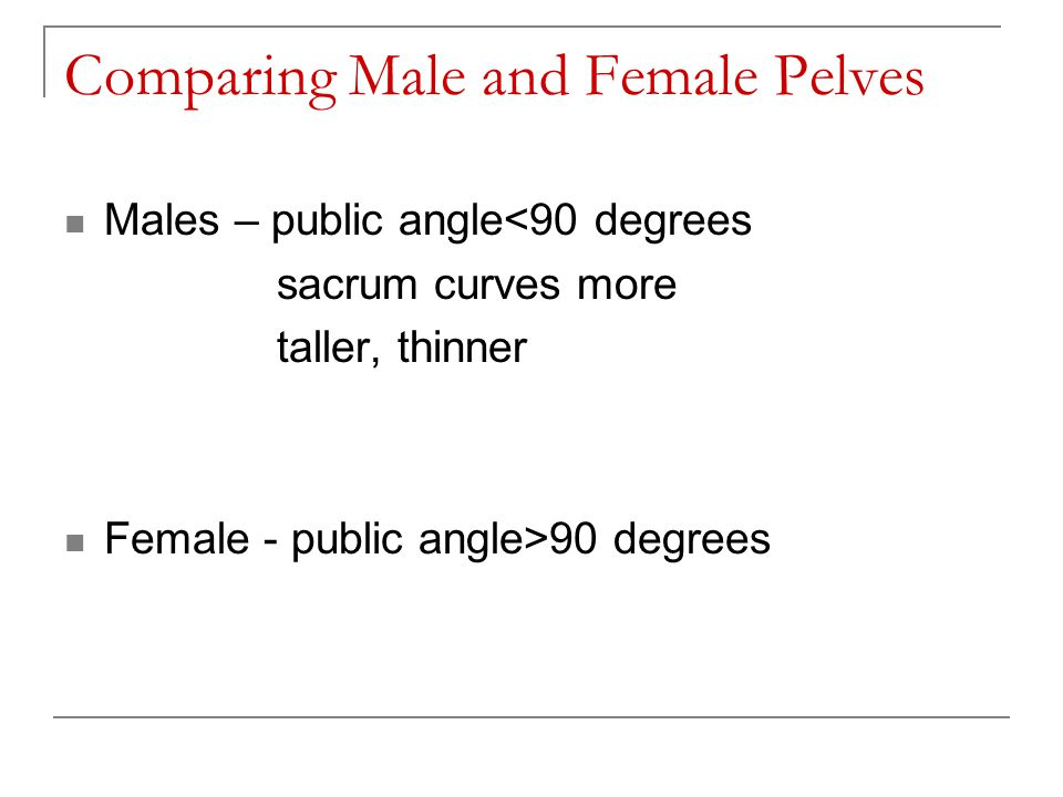 Comparing Male and Female Pelves Males – public angle<90 degrees sacrum curves more taller, thinner Female - public angle>90 degrees