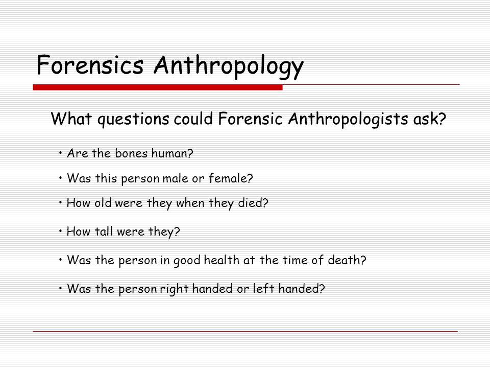 Forensics Anthropology What questions could Forensic Anthropologists ask.