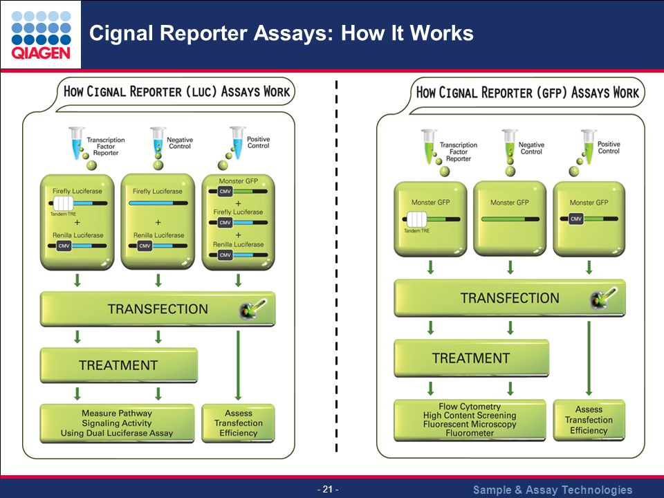 Sample & Assay Technologies - 21 - Cignal Reporter Assays: How It Works